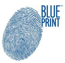 SUBFAMILIA DE BLUE  BLUE